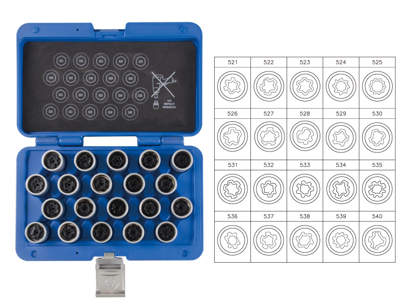 20 PC. Wheel Lock Screw Socket Set (VW) | KING TONY | 9BW0120